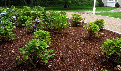 Mulch service in Indianapolis